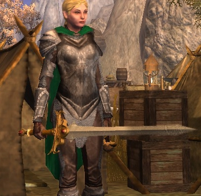 Female Paladin from Neverwinter Nights